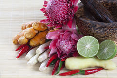 Asian herb and spicy  ingredients Royalty Free Stock Images