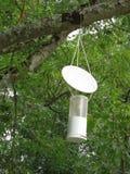 Asian hornet trap stock image