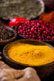 Asian hot theme with spices Stock Photography