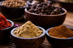 Asian hot theme with spices Stock Photo