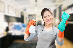 Asian housewife holding spray bottle and rag stock photos