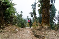 Backpakers in Nepal jungle trek Stock Photos
