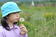 Asian kid blowing dandelions Royalty Free Stock Photography