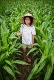 Asian kid Stock Photography