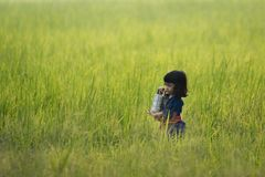 Asian kid in farmer Thai culture dress holding Food carrier stock image