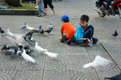 Asian kid, pigeon Stock Photos