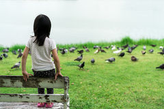 Asian kid sitting on the old wood bench. Back view of Asian kid sitting on the old wood bench watching birds in the park royalty free stock photography