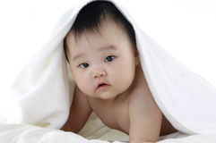 Asian kids Stock Image