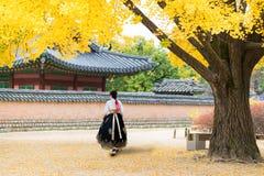 Asian Korean woman dressed Hanbok in traditional dress walking in Gyeongbokgung Palace in autumn season at Seoul, South Korea stock photos