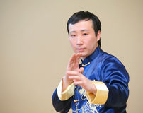 Asian kung-fu fighter Royalty Free Stock Photo