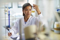 Asian Laboratory scientist working at lab with test tubes. One male Chinese Laboratory scientist working at lab with test tubes Royalty Free Stock Photos