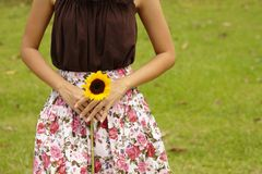 Asian lady holding yellow flowe. R in field, torso shot Stock Photos