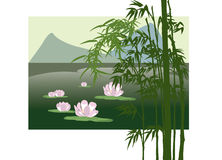 Asian lake with water lily Stock Image