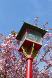 Asian Lamp in Victoria Canada Stock Photography