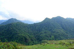Asian landscape. Forests and mountains of North Vietnam stock images