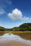 Asian landscape with pond stock image