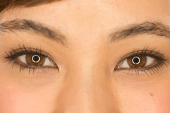 Asian Latina girl woman eyes Stock Photography