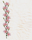 Asian lily flowers border on rice paper Stock Images