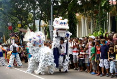 Asian Lion - dancers on carnival. Stock Photography