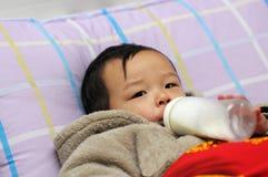 Asian little boy Royalty Free Stock Image