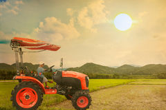 Asian little boy driver tractor on rice field Royalty Free Stock Photography