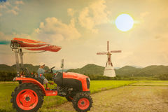 Asian little boy driver tractor on rice field Stock Photo
