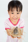 Asian Little Chinese Girl Holding Small Bird in hands Stock Photos