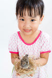Asian Little Chinese Girl Holding Small Bird in hands Stock Images