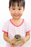 Asian Little Chinese Girl Holding Small Bird in hands Stock Photo
