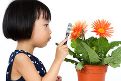 Asian Little Chinese Girl Looking at Flower through a Magnifying Royalty Free Stock Photography