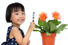 Asian Little Chinese Girl Looking at Flower through a Magnifying Stock Photo