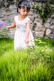 Asian Little Chinese Girl in Princess Costume Royalty Free Stock Photography
