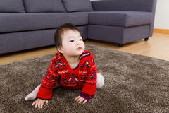 Asian little girl crawling on carpet and looking up Stock Photos