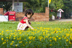 Asian little girl in green Lawn Royalty Free Stock Images