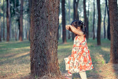 Asian little girl is playing hide-and-seek hiding face Royalty Free Stock Photo