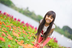 Asian little girl standing in a meadow Stock Images