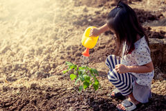 Free Asian Little Girl Watering Young Tree With Watering Pot Royalty Free Stock Photos - 84637128