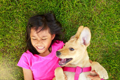 Asian Little girl with a yellow labrador puppy in a park, outdoo Stock Image