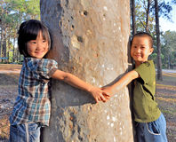 Asian little girls hugging a tree Stock Photo