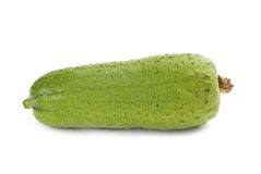 Asian-loofah, popular vegetable in china Royalty Free Stock Photos