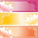 Asian lotus banners Royalty Free Stock Image