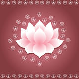 Asian lotus Royalty Free Stock Image