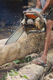 Asian lumberjack trimming a fir tree log with a chainsaw Royalty Free Stock Photo