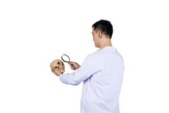 Asian male archeology scientist examining a human skull. Isolated on white Royalty Free Stock Photos
