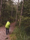 An Asian male carrying a large backpack with fluorescent greens walks in the forest trail stock photography