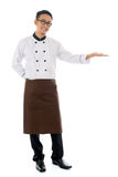 Asian male chef hand showing blank space. Full body Asian male chef hand showing blank space, standing isolated white background royalty free stock images