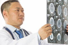 Asian male doctor Royalty Free Stock Photo