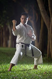 Black belt karateka Royalty Free Stock Photo