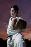 Black belt karateka Royalty Free Stock Image