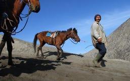 Asian man bring horse Royalty Free Stock Photos